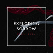 Exploding Sorrow by Allie Byal