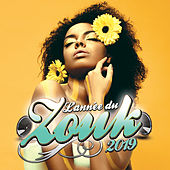 Année du Zouk 2019 by Various Artists