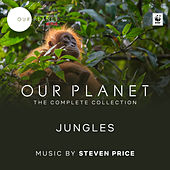 Jungles (Episode 3 / Soundtrack From The Netflix Original Series
