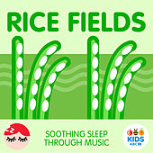Rice Fields - Soothing Sleep Through Music de ABC Kids