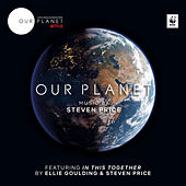Our Planet (Music from the Netflix Original Series) by Steven Price