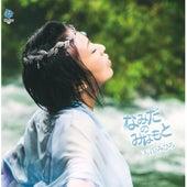 Namida No Minamoto by Mihiro Amane