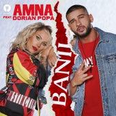 Banii von Amna