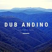 Luminario Arial von Dub Andino