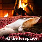At the Fireplace by Universe Mind