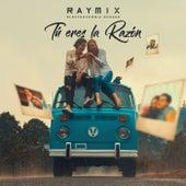 Tú Eres La Razón (Electrocumbia Remake) de Raymix