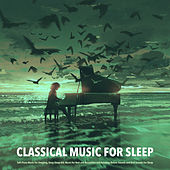 Classical Music For Sleep: Soft Piano Music For Sleeping, Deep Sleep Aid, Music For Rest and Relaxation and Relaxing Nature Sounds and Bird Sounds For Sleep by Deep Sleep Relaxation