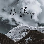 No Sleep (Acoustic) de Landon Austin
