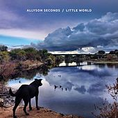 Little World by Allyson Seconds