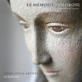 Schmelzer: Le Memorie Dolorose by Various Artists