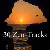 30 Zen Tracks by Nature Sounds (1)