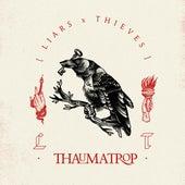 Thaumatrop by Liars