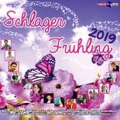 Schlager Frühling 2019 von Various Artists