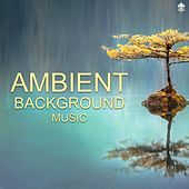 Ambient Background Music by Various Artists
