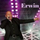 Erwin by Erwin