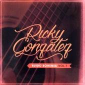 Ruido Bohemia, Vol. 1 de Ricky Gonzalez