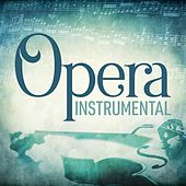 Opera Instrumental by Various Artists