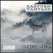 Cold Dayz de Easturn Vantage