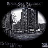 DJ Nytty the Hits von Various Artists