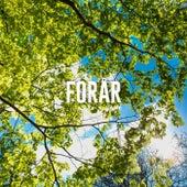 Forårshygge - Hyggelig musik til afslapning - Hyggelige sange til gode tider by Various Artists