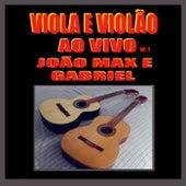 Viola e Violão, Vol. 1 (Ao Vivo) de João Max E Gabriel