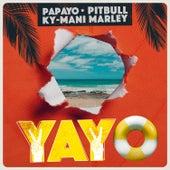 Yayo van Papayo