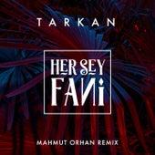 Her Şey Fani (Mahmut Orhan Remix) de Tarkan