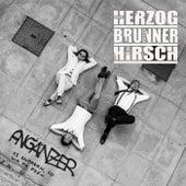 Angänzer by Herzog - Brunner - Hirsch