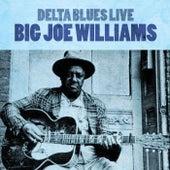 Delta Blues Live de Big Joe Williams