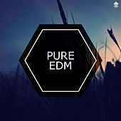 Pure EDM by Various Artists