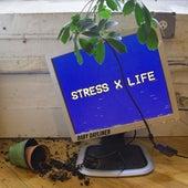 Stress X Life by Baby Dayliner