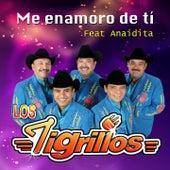 Me Enamoro de Tí by Los Tigrillos
