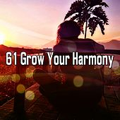 61 Grow Your Harmony by Asian Traditional Music