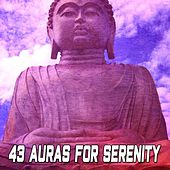 43 Auras for Serenity by Classical Study Music (1)