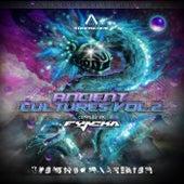 Ancient Cultures Vol.2 de Various Artists