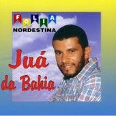Folia Nordestina de Juá da Bahia