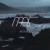 Litost von Minxz
