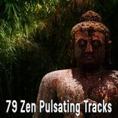 79 Zen Pulsating Tracks von Massage Therapy Music