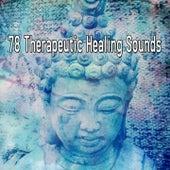 78 Therapeutic Healing Sounds de Meditación Música Ambiente