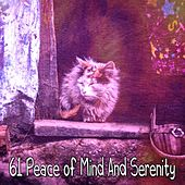 61 Peace of Mind and Serenity by S.P.A