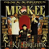 14 Kt. Dreams by Mr. Kee