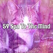59 Spa to the Mind by S.P.A