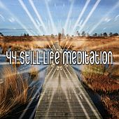 44 Still Life Meditation von Massage Therapy Music