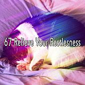 67 Relieve Your Restlesness de Nature Sounds Nature Music (1)
