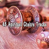 45 Spiritual Chakra Tracks von Lullabies for Deep Meditation
