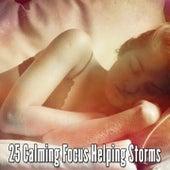 25 Calming Focus Helping Storms de Thunderstorm Sleep