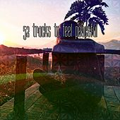 52 Tracks to Feel Peaceful de Zen Meditation and Natural White Noise and New Age Deep Massage