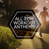 All EDM Workout Anthems von Various Artists