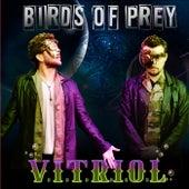 V.I.T.R.I.O.L von BIRDS OF PREY