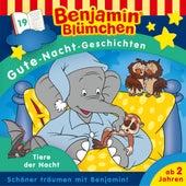 Gute-Nacht-Geschichten - Folge 19: Tiere der Nacht von Benjamin Blümchen